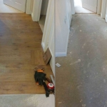 Laminate Flooring in Nowell Road