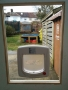 Cat flap Door in Woodhead